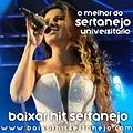 CD Baixar Hit Sertanejo Vol. 2 (2013)