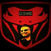 *** SNAKE DJ IN THE MIX *** - Free Online Music