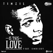 Timzil - Free Online Music