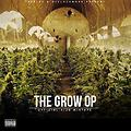 The Grow Op (Intro)