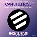 Kourosh Tazmini feat. Anda Adam - Can U Feel Love (Alex Guerrero Remix)