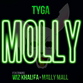 Tyga-Ft.-Wiz-Khalifa-Mally-Mall-Molly-Instrumental