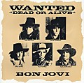 BON JOVI-Wanted Dead Or Alive (Accoustic Version)