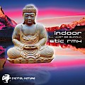 Indoor - I'll Just Be Buddha (Etic Remix)
