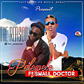 pelepele_ft_Small_Doctor_-_The_Reason