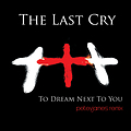 The Last Cry - To Dream Next To You (peteyjames remix)