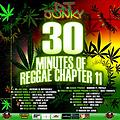 DJJUNKY-30 MINUTES OF REGGAE CHAPTER 11