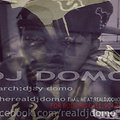 DJ DOMO 2013 MIX VOL.1