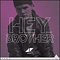 07 - Avicii - Hey Brother (Syn Cole  Mix)