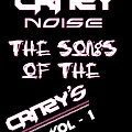 Crazy Noise - The songs of the crazy's