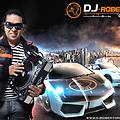 Mix Electro Super Exitos Vol 17 2013 - Dj Robert Original www.djrobertoriginal