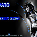 Dj Gato-Summer Hits Session 2012