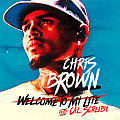 Chris Brown Ft. Cal Scruby - Welcome to My Life