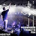 Kaskade Tribute Mix