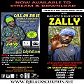 Zally - Radio Interview on The Black and White Radio Show 2-6-18