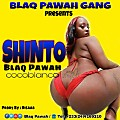 Shinto (Prod. by Disaab)
