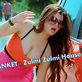 Zulmi Zulmi Dj Sanket House Mix