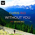 Without You (Ft SkweiRd)