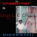 stiny leo(m2k)-(the introduction freestyle)(mixed by ttr)