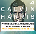 Promise Land & Junior Black vs Calvin Harris feat. Florence Welch - Sweet Noise Nothing (Abel The Kid 2014)