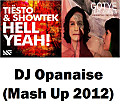 Tiesto & Showtek vs. Gotye  – Somebody in Hell That I Used to Know (Opanaise Mash Up 2012)