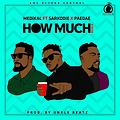 Medikal - How Much (remix) Feat Sarkodie x Omar Sterling (Gillyweb.com)