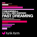 28 Past Dreaming (feat. Sultan & Ned Shepard)