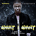 BobbyMax-What I Want(Produced by PHAT-E)