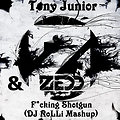 Tony Junior & Zedd - F*cking Shotgun (DJ RoLLi Mashup)