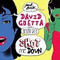 David Guetta ft. Skylar Grey - Shot Me Down (HQ)