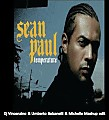 Sean Paul -Temperature (Dj Vincenzino & Umberto Balzanelli & Michelle Mashup edit)