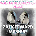 Walking Resurrection Alone (Zack Edward Mashup)