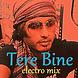 tere bine electro mix By Dj Joy Bee